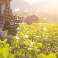 Agriculture and Information Technology Pentashiva Infraventures Pvt. Ltd.